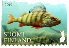 postimerkki 2019_aa Postcards, Stamps, Fish, Pets, Animals, Beautiful, Seals, Animales, Animaux