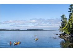 An poster sized print, approx (other products available) - Ocean canoeing in Telegraph Cove, British Columbia, Vancouver Island, Canada - Image supplied by AWL Images - Poster printed in Australia America And Canada, North America, Trail, Canada Images, Western Canada, Vancouver Island, Kayaking, Canoeing, Archipelago