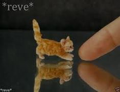 dollhouse miniature calico kitten