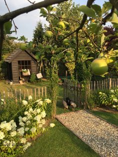 Farm Gardens, Outdoor Gardens, Woodland Garden, Chicken Garden, Garden Spaces, Dream Garden, Garden Planning, Garden Inspiration, Vegetable Garden