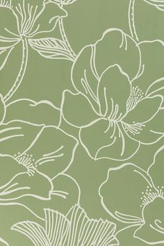 Eco-friendly paint and wallpaper Sage Green Wallpaper, Of Wallpaper, Wallpaper Backgrounds, Iphone Wallpaper Green, Aesthetic Backgrounds, Aesthetic Iphone Wallpaper, Aesthetic Wallpapers, Floral Print Wallpaper, Cute Patterns Wallpaper