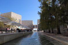 Courtyard fountain pond  @gettymuseum #GettyMuseum #LosAngeles  @thegetty #DiscoverLA