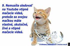 www tučné ženy mačička com