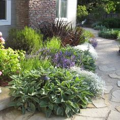 english garden foundation plants | Landscape foundation planting Design Ideas, Pictures, Remodel and ...