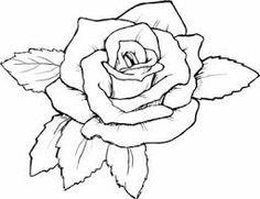 Image result for google designs roses