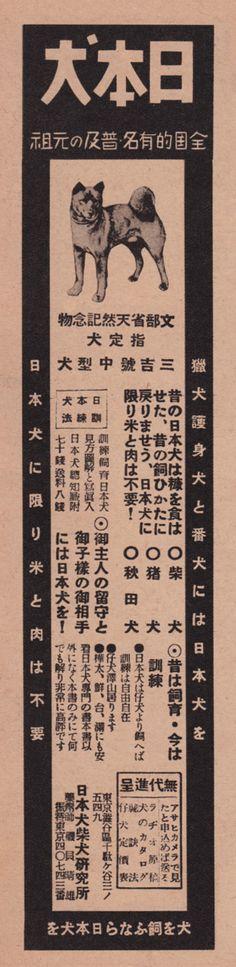 1940年代以前モノ - ノモシカツナ告廣誌雜之和昭 - Yahoo!ブログ続いてのレトロ広告は、 1941年、日本犬柴犬研究所の広告です。 なかなか、、、レアな広告ですゾ!!! まあ、所謂プロパガンダ広告に属するモノかと思われますが、、、日本犬の飼育法を説いた販売をしていたんでしょうね。 「日本犬に限り米と肉は不要」のコピーは色々考えさせられたりしますが、、、 現在は外国で日本犬ブームが起きているみたいですが当時から日本犬の素晴らしさを実証していたといえるのかもしれません。。。 では、どうぞ。 1941年、アサヒカメラより