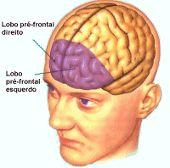 Distúrbio de Déficit de Atenção (DDA / TDAH) relacionado com o córtex pré-frontal