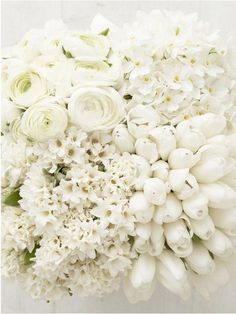 Gorgeous White Flowers: Ranunculus, Hydrangea, Tulips, Hyacinth