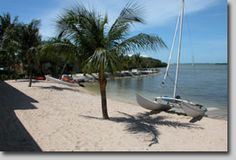 Our Private Beach! Free Waterfront Accommodations. Perfect for storing and launching your boats, paddle boards, and kayaks. #MarriottCourtyardKeyWest #KeyWestHotel #KeyWest