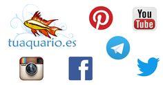 Todas las redes sociales de equipo de Tuaquario.es