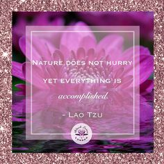 Reposting @blacklotus_jewellery: A bit of zen to channel as the final countdown to Christmas is upon us!  Remember: 'Nature does not hurry, yet everything is accomplished' - Lao Tzu 🌸  #BlackLotusLondon 💜 #FridayPhilosophy 💭 #fridayfeeling 🧠 #feelgoodfriday 💪🏽#fridayfeels #zen #mindful #quotesdaily #quotestags #wise #quotesgram #positivequotes #quotesofinstagram #saying #wordsofwisdom #wordporn #inspiringquotes #tumblrquotes #wisewords #quotesaboutlove #quoted #quotesoftheday