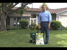 How to Control Weeds in Your Lawn Part 2 - Ace Hardware