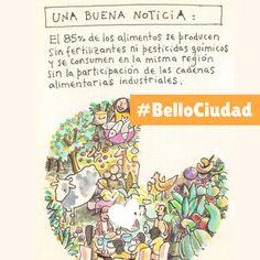 #BelloCiudad #EcoAgrocultura Books, Cities, Libros, Book, Book Illustrations, Libri