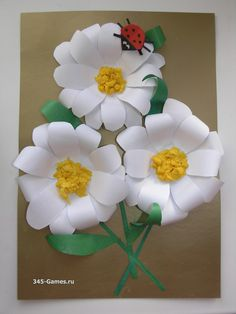 Три цветка и божья коровка