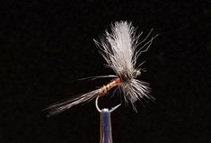 Big Sky Anglers Featured Fly – JoJo's Gray Drake