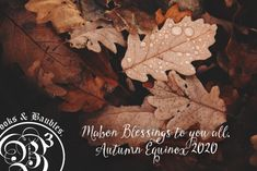Come browse our website for ideas and witchy supplies Mabon, Blessed, Autumn, Website, Gallery, Shop, Movie Posters, Ideas, Art