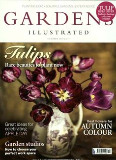 Tulips - Rare beauties to plant now. Best flowers for Autumn colour. Gefunden in: GARDENS ILLUSTRATED, Nr. 10/2014