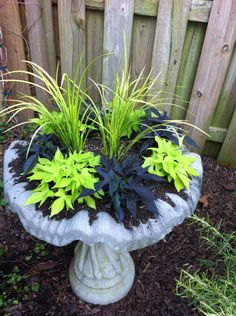Took my old bird bath and turned it into a flower display!