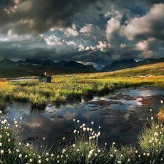 Changing Seasons ....by Max Rive