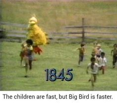 Are Big Bird Memes on the rise? Or are they too similar to Cat In The Hat Memes?