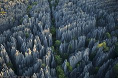 'Grand Tsingy' landscape in western Madagascar - the world's largest stone forest