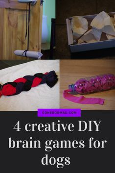 Use household objects to create great canine enrichment games. Takes no more than 5 minutes to make each one. #canineenrichment #braingamesfordogs #dogdiy