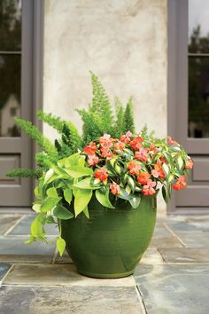 The high-drama, low-maintenance container spotlights 'Variegated Spreading Salmon' SunPatiens, but leaves room for a foxtail asparagus fern and a 6-inch pot of 'Neon' pothos.