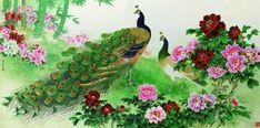 Peocock Paintings