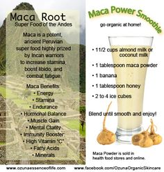 """go organic at home! How Can Maca Benefit You?  Maca is a potent, ancient Peruvian superfood highly prized by Incan warriors to increase stamina, boost libido, and combat fatigue... Share & """"Like"""" help build awareness to Ozuna Organic Skincare https://www.facebook.com/OzunaOrganicSkincare"""