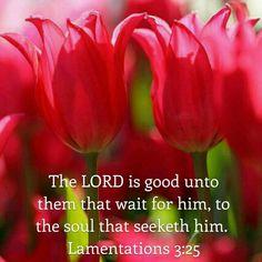 Lamentations 3:25 KJV
