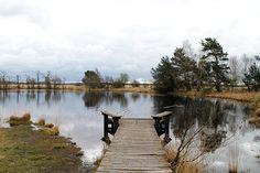 National park de Hoge Veluwe.