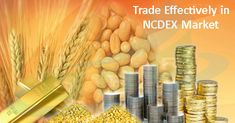 Trade effectively in NCDEX market:: There are many ways to trade in the stock and the commodity market. NCDEX market seems attractive to many traders. NCDEX stands for national commodity and derivative exchange. The trader can trade on various commodities. The commodity categories include agri and non agri commodities. Also precious metals and petroleum commodities are important commodity categories. The trader can learn technical analysis for the analysis of price movements.