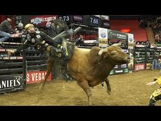 This 19-year-old cowboy made $117,000 for 32 seconds of work - YouTube
