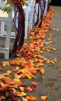 Fall leaves down the aisle.