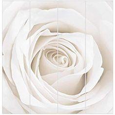 Bilderwelten Rosenbild Raumteiler White Rose Blumen 250x120cm inkl. transparenter Halterung: Amazon.de: Küche & Haushalt Divider, Flowers, Household, Room Screen