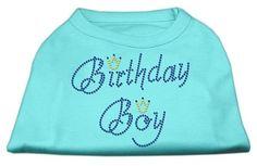 Birthday Boy Rhinestone Shirts Aqua XXXL(20)