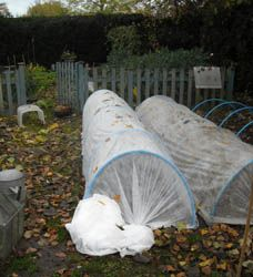 How To Urban Garden How to make a cheap and elegant cloche Allotment Gardening, Allotment Ideas, Urban Gardening, Garden Cloche, Bottle Garden, Cold Frame, Garden Buildings, Raised Beds, Permaculture