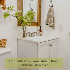 Love this farmhouse look! Small Bathroom Mirrors, Small Bathroom Storage, Shower Liner, Shower Rod, Mobile Home Makeovers, Tall Mirror, Mobile Home Living, Bath Cabinets, Vanity