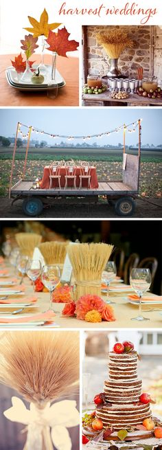 harvest weddings