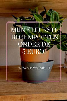 Met een huis vol planten is het ook fijn om een hoop leuke bloempotten te hebben. Maar waar haal je deze voor een betaalbare prijs? Ik zet het voor je op een rijtje.  #bloempot #plant #pot #bloemen #goedkoop #budget #homedeco #accessoires #homestyle