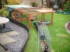 Great idea- could even use this set up using pet door directly from house (Rabbit Houses) Bunny Cages, Rabbit Cages, House Rabbit, Pet Rabbit, Lionhead Rabbit, Guinea Pig Run, Guinea Pig House, Rabbit Enclosure, Bunny Hutch