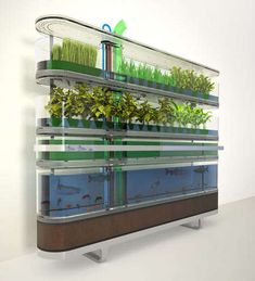 Home Farming Boxes : mini-farm grow box
