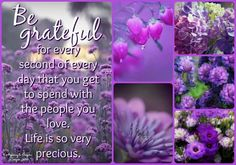 Happy Quotes, Life Quotes, Qoutes, Purple Love, Pink, Color Collage, How To Express Feelings, Colour Board, Happy Saturday