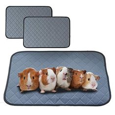 bfuee Guinea Pig Cage Liners,Anti Slip Guinea Pig Bed&Waterproof Reusable,2 Pack Super Absorbent Guinea Pig Pee Pad for Small Animals,Washable(Size 23.6x17.7) - Default