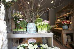 ...so beautiful...hyacinths...my favorite spring flower!