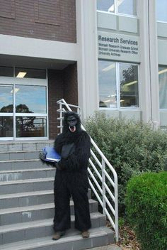This is what @WeAreAustralia wore to hand in their thesis. Gorilla suit? Well played. Thanks @researchwhisper for the heads up on this one