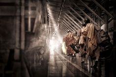 The Journey of the Seekers by Anuchit Sundarakiti on 500px::