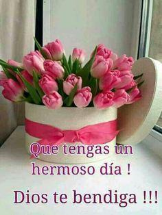 Good Morning, Birthdays, Lily, Salvador, Worship, Ms, Meditation, Humor, Facebook