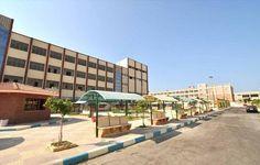 """جريدة الرأي البورسعيدي ::مجلس جامعة بورسعيد : بدء الدراسة بجميع الكليات 27 سبتمبر المقبل .. وتحاليل """" الإدمان """" شرط القبول بالمدن الجامعية"""