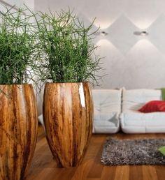 Ein cooler Pflanzkübel mit einer Oberfläche aus echten Bananenblättern mit einem Korallenkaktus bepflanzt